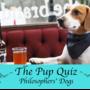 Pup quiz thumbnail image 2