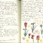 Sylvia journals