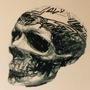 Alu skull