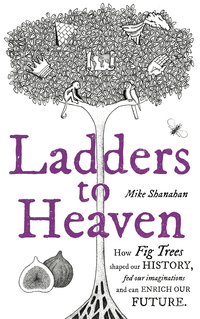 Cover of Ladders To Heaven