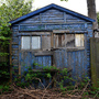 Blue shed small