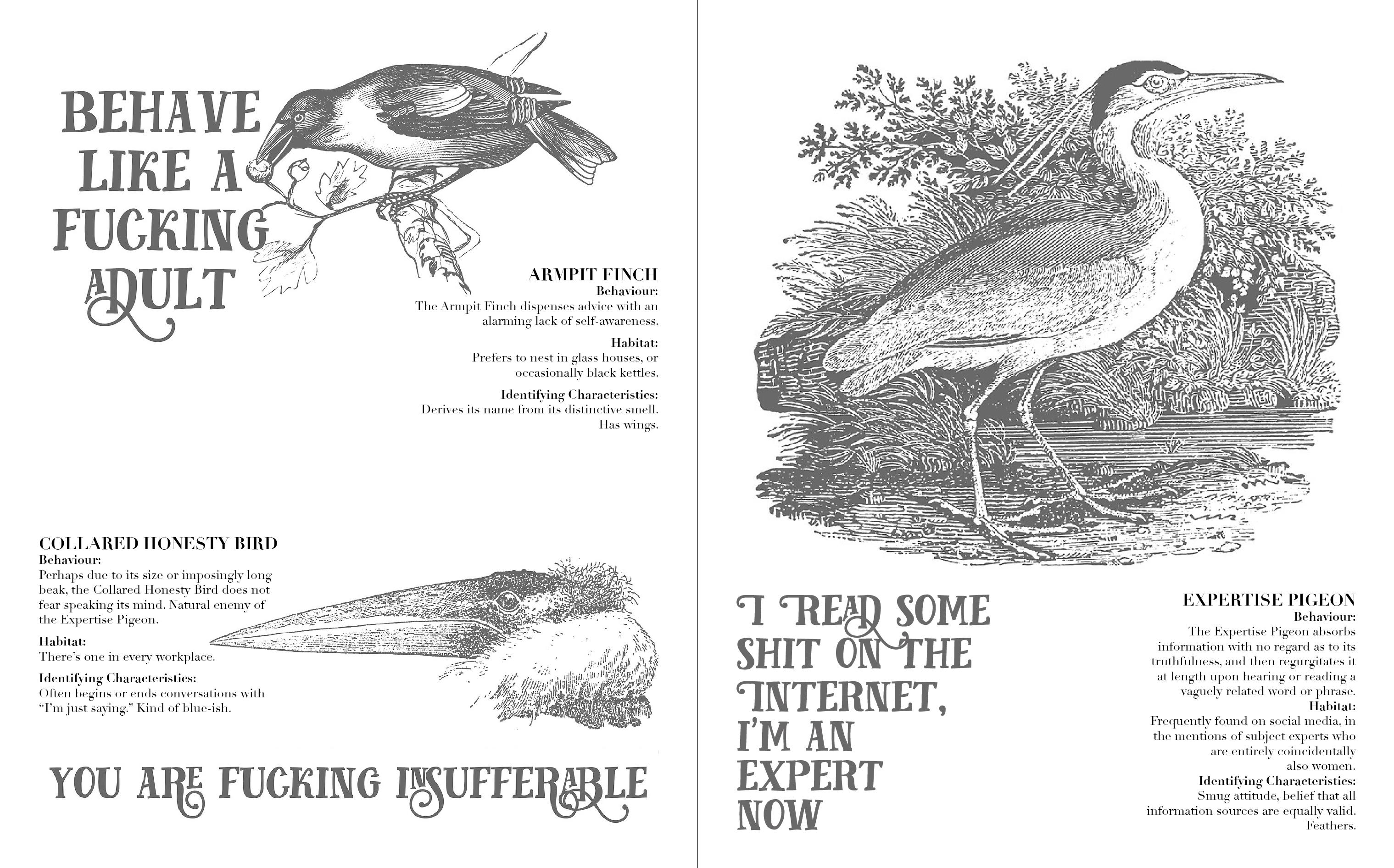 Effin' Birds: A Guide to Field Identification by Aaron