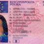 Drivinglicense 1318299c