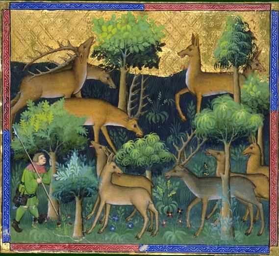 How the gawain poet employs nature in sir gawain and the green a fandeluxe Gallery