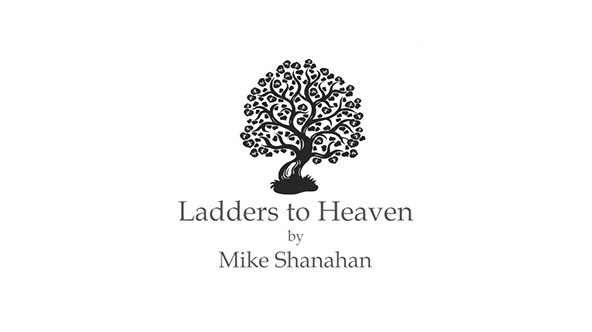 Ladders To Heaven By Mike Shanahan Unbound