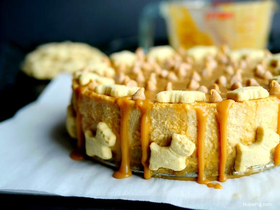 Butterscotch Overload Cheesecake