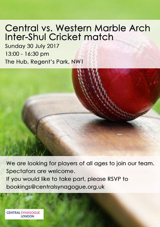 Cricket-match-30-July-2017-