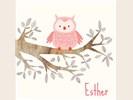 Stijlvolle kaartjes bij JilleJille.nl - geboortekaartjes