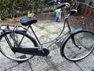Oma fiets voor volwassen