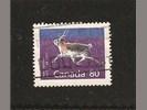 Caribou uit Canada