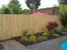 Tuinscherm bamboe 200x500cm