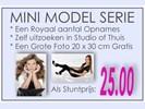 Mini Modellen Serie slechts 25.00 euro