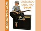 Crescendo Music Oordopjes Concert - Festival