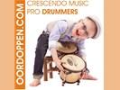 Crescendo Music Pro Drummer Oordopjes