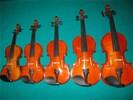 1/16 t/m 4/4 viool voor starters & gevorderden