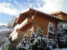 2 x 6-pers. Chalet HIPPACH (MAYRHOFEN) panorama, skibushalte