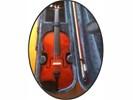 4/4 Muziekschool VIOOL Compleet en Super Speelklaar