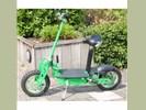 Elektrische fun step / scooter 500 Watt