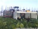 Riecam SPH 150 kool- en pompoen oogstmachine