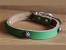 """Leren hondenhalsband """" Concho met rode steen """" Groen"""