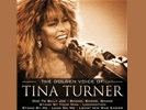 Tina Turner - The Golden Voice of (2CD)
