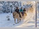 Winter paardrijtocht 2,5 uur, Trysil