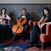 Quatuor Terpsycordes Oekolampad Basel Biglietti