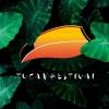 Tucan Festival x Silvester Edition Südpol Luzern Tickets