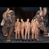The Bawdies (JP) + The Giant Robots (CH) Espace culturel le Nouveau Monde Fribourg Tickets