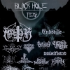 Black Hole Fest Hall of Fame Wetzikon (ZH) Tickets