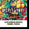 Chamito Sound T-Room Solothurn Tickets