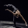 Kibbutz Contemporary Dance Theater Casino Zug, Theatersaal Zug Tickets