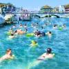 53. Zürcher Limmatschwimmen Frauenbadi Stadthausquai Zürich Tickets