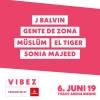 VIBEZ Openair 2019 - Tagespass Donnerstag Gelände Tissot Arena Biel Biel / Bienne Tickets