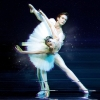 Russian Ballet Jewels - The Legacy of Diaghilev Salle Métropole Lausanne Tickets