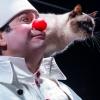 Clown and Cats mit Moskauer Katzentheater Lorzensaal Cham Biglietti