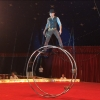 Circus Olympia - Circus wie er sein soll! Several locations Several cities Tickets