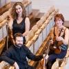 Gringolts Quartet Stadtcasino, Hans Huber-Saal Basel Biglietti