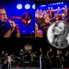 groovin'BRASS - let's groove Konzepthalle6 Thun Biglietti