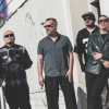 The Aggrolites (US) Kammgarn Schaffhausen Tickets