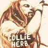Collie Herb & The Mighty Roots Kulturfabrik Kofmehl/Raumbar Solothurn Tickets