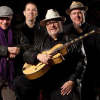 Duke Robillard Band Marians Jazzroom Bern Billets
