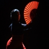 Flamenco Festival Elisabethenkirche Basel Tickets