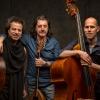 Titi Robin Trio Moods Zürich Biglietti