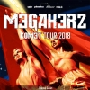 Megaherz - Komet Tour 2018 Musigburg Aarburg Tickets