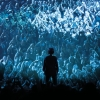 Nick Cave And The Bad Seeds Hallenstadion Zürich Tickets