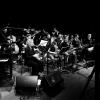 BigBand Fever - Sarah Chaksad Orchestra Jazzcampus Basel Basel Biglietti