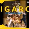 Figaro für Operneinsteiger Goetheanum Dornach Billets