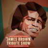 The James Brown Tribute Show Alte Kaserne Zürich Biglietti