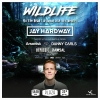 Wildlife with Jay Hardway (NL) Plaza Zürich Billets